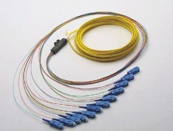 ประเทศจีน Optical Fiber Patch Cord Pigtail 1, 4, 6, 8, 12, 24, 36, 72, Fibers Bunch Fan-out Splitter ผู้ผลิต